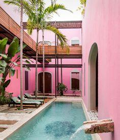 Pink Wall - Rosas y Xocolate in Merida, Mexico