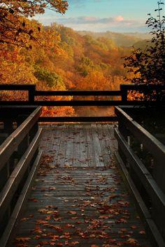 ponderation: Autumn Overlook by Robert Blair