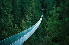 Capilano Suspension Bridge North Vancouver, British Columbia, Canada I have walked this bridge and it is an exhilarating scene. The Bridge stretches 450 feet across and 230 feet above Capilano River. Would go back to Vancouver any time--love that place! Beautiful Places In The World, Places Around The World, Around The Worlds, Amazing Places, Amazing Photos, Wonderful Places, Beautiful Things, Vancouver British Columbia, North Vancouver