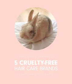 Cruelty-Free and Vegan Hair Products We Love