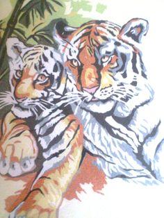 tigres en sable coloré