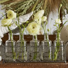 Found it at Wayfair - Casual Country 6 Piece Glass Bottle/Vase Set
