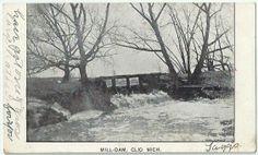 Clio Mi Mill Dam Antique Postcard Michigan