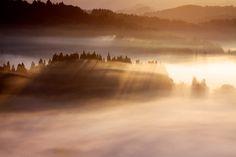 Photo Morning Beams by Hiroshi Shirasaki on 500px
