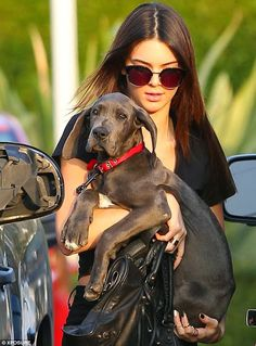 Celeb Diary: Kendall Jenner @ Fred Segal in West Hollywood