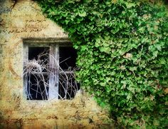 Italian Windows #2, Bussana Vecchia by h_roach - Moving and will be busy for a while, via Flickr