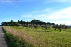 Immobilienangebot - Gavorrano - Landwirtschaftliches Anwesen mit 36 Hektar Land in Meernaehe