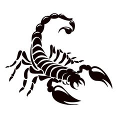 The Story of the Scorpion Tattoo Escorpion Tattoo, Tattoo Zeichnungen, Zodiac Tattoos, Symbol Logo, Symbolic Tattoos, Tattoo Sketches, Line Art, Vinyl Decals, Phoenix