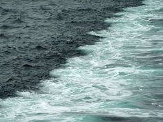 Gulf of Alaska. Where to oceans meet but do not mix L'or Bleu, Two Oceans Meet, Gulf Of Alaska, Ocean Pictures, Ocean Pics, Beyond The Sea, What A Wonderful World, Ocean Waves, Beautiful Places