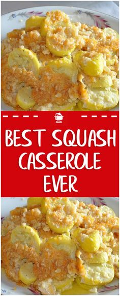 You'll Need: 2 lbs of yellow squash. 1 cup of cheddar cheese. ¾ cup of milk. ½ cup of melted butter. Salt and pepper. How to: First, steam the squash and onion lightly, drain and set Easy Squash Casserole, Southern Squash Casserole, Yellow Squash Casserole, Veggie Casserole, Casserole Recipes, Squash Caserole, The Best Squash Casserole Recipe, Zuchinni And Squash Casserole, Stuffing Casserole