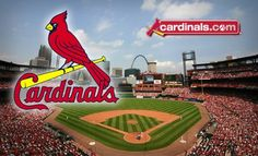opening day! love my cards!