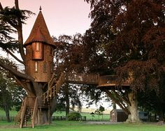 The castle of treehouses