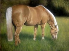 Palomino horse portrait by hollycottagefineart.com