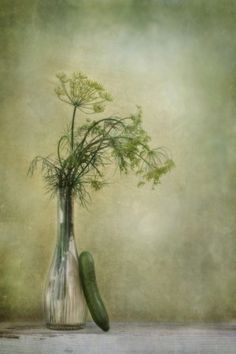 Dill and Cucumber by Priska Wettstein