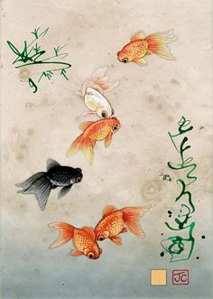 Bug Art Five Fantail Fish