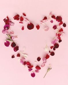 scatter petals for your valentine
