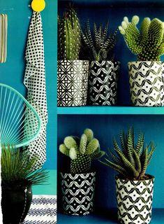 Vários vasos em preto e branco com desenhos diversos sobre fundo azul. Ficou lindo.