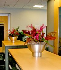 Corporate Offices, Office Buildings, and Businesses with interior landscapes are distinguishable from other buildings because of their inviting interior. http://www.plantscapeinc.com/landscape-portfolio/landscaping-office-buildings.html