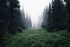 #photo #nature