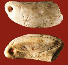 Las Caldas - espagne - dent de cachalot percée et gravée utilisée en parure