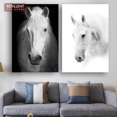 Black-and-White Horse Close-up Photography Painting For Home Decoration Canvas Printing Modern Wall Art (Undramed)RA0123