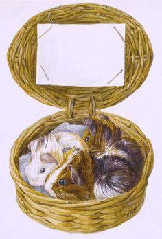 Три морские свинки в корзинке Беатрикс Поттер