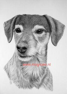 TEKENINGEN VAN MENS EN DIER Draw Animals, Black And White Painting, Graphite Drawings, Copic, Animal Drawings, Art Lessons, Paintings, Dogs, Drawings