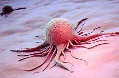 Теперь мы знаем правду: ученый заявил, что рак - не болезнь