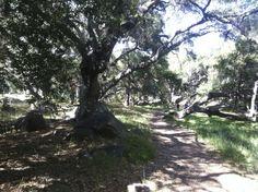 A walk through Rocky Nook Park in Santa Barbara
