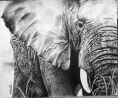 Kristen Valle, was created using just a no.2 pencil and an eraser