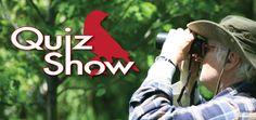 Wild Bird ID Quiz Show #1 : Presented by Sweet-Seed – Sweet-Seed Wild #Bird Blog –