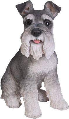 Vivid Arts schnauzer miniatura, perro de resina: Amazon.es: Jardín