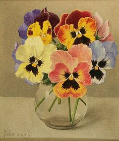 "painting - by Jan Voerman Jr. - ""Kleurige viooltjes in een glas"" - pansy - flower design Art Floral, Watercolor Cards, Watercolor Flowers, Watercolor Paintings, Botanical Art, Botanical Illustration, Dutch Painters, China Painting, Pictures To Paint"