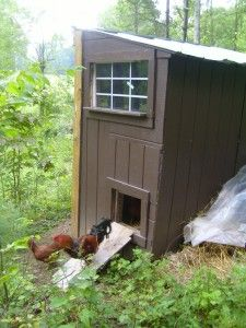 Chicken coop using recycled wood