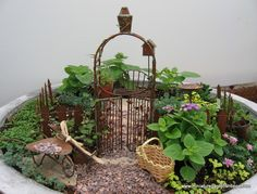 want to do a fairy garden with hayden.  I think these are so cute!