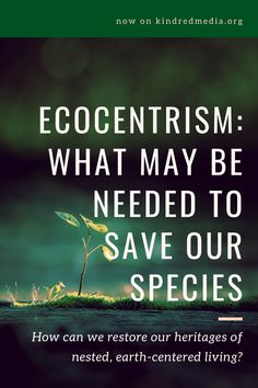 How can we restore our heritages of nested, earth-centered living? Human Condition, Retelling, Natural History, Restore, Nest, Restoration, Earth, Inspiration, Nest Box
