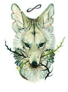 Coyote tattoo - just the coyote though, without the branches or infinity symbol Art And Illustration, Illustrations, Fantasy Kunst, Fantasy Art, Animal Drawings, Art Drawings, Coyote Tattoo, Fuchs Tattoo, Arte Pop