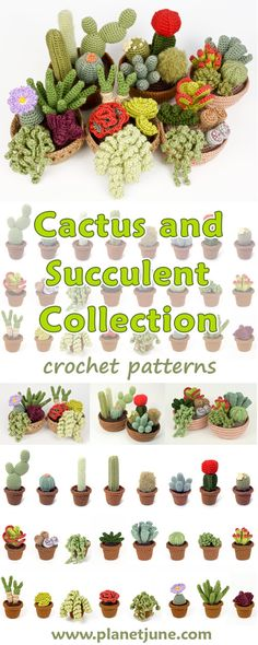 Crocheted cacti and succulents never need watering, never die, and are always in peak condition. With these collections, you can crochet 24 different realistic succulents in individual pots, or mix-and-match to make a beautiful cactus or succulent garden arranged in one large crocheted pot. It's the perfect thing to brighten up your window or desk, or to give as an unusual and thoughtful gift.