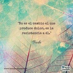No es el cambio el que produce dolor, es la resistencia a él.