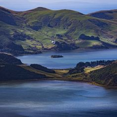Hoopers and Papanui inlets, Otago Peninsula by William McPhail Display Advertising, Print Advertising, Free Stories, Us Images, Wall Art Prints, Fiction, Author, Stock Photos, Photography