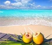 Amazing view delicious coconuts in Thailand Photo by. Punta Cana, Saona Island, Coconuts Beach, Coconut Drinks, Thailand Photos, Fruit, Amazing, Food, Beaches