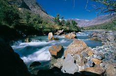 Día Nacional del Medio Ambiente: Más de 100 parques, reservas y santuarios de la naturaleza abren gratis este fin de semana