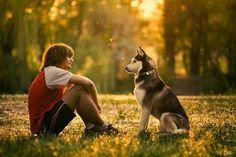 Le chien et son maitre avec harmonie, il ecoute