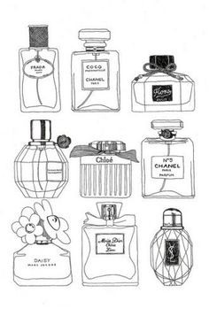 fancy perfume bottles illustration, simple black & white sketch, drawing, illustration