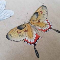 Butterfly Painting, Butterfly Art, Gouache Painting, Watercolor Paintings, Chinese Butterfly, Korean Painting, Butterfly Illustration, Art Deco Posters, Iranian Art