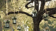 tiny lanterns wedding | ... lanterns pictures top rated high quality lanterns wallpapers