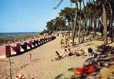 Ronce les Bains Ile D Aix, Nature, Trips, Dolores Park, Travel, Aquitaine, Tourism, House, Traveling