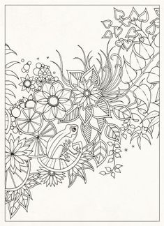 coloring pages for grownups -Secret Garden: 20 Postcards: Johanna Basford… Adult Coloring Pages, Printable Coloring Pages, Colouring Pages, Free Coloring, Coloring Sheets, Coloring Books, Colorful Pictures, Doodle Art, Embroidery Patterns