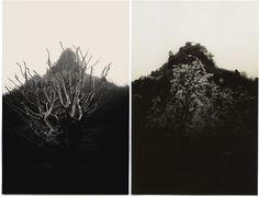 "albarrancabrera:  Albarran Cabrera""The mouth of Krishna"" Japan, 2014. #168.Japan, 2014. #167."