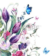 Gentle Floral Vintage Watercolor Greeting Card with Sweet Peas Tulips and Butterflies botanical illu Stock Illustration